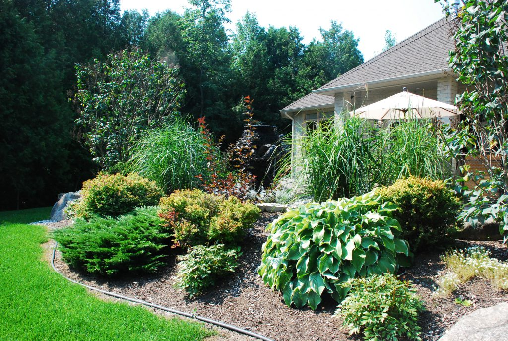 Home garden example - mulch