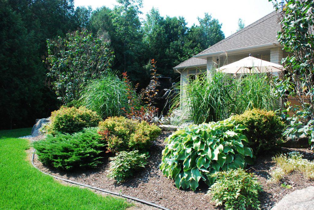 Home garden example - mulch