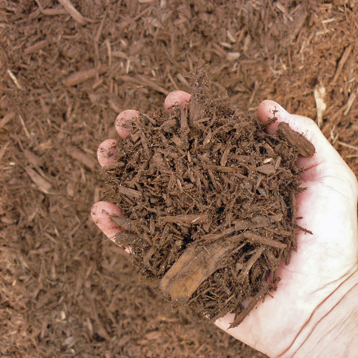 Chocolate Shredded Cedar Mulch