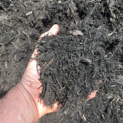 Greely Sand & Gravel enhanced black bark mulch in hand